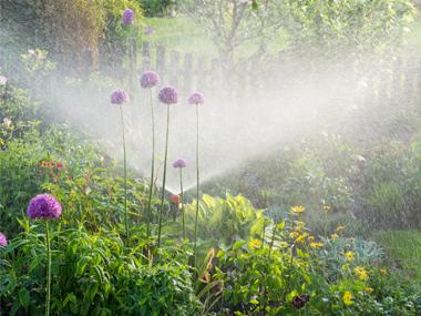 Smart Garden: So wird dein Garten smart